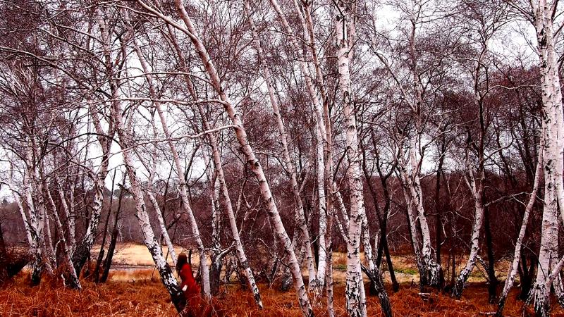 seek and hide. film still2